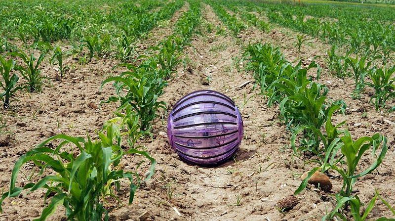 מותג חדש כדור בדולח חקלאי | אגריניוז UB-23