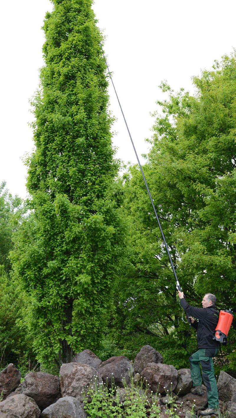 אורך צינור הריסוס XL 8 מאפשר גישה נוחה לגבהים שעד כה היה צריך לטפס על סולם או מערכת הגבהה אחרת בכדי להגיע אליהם
