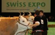 מיוחד: מדריך תערוכות חקלאיות ב-2013