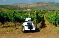 הרובוט לכרמים – השלב הבא
