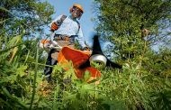 חרמש מנועי: עבודה ובטיחות